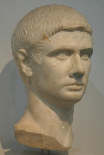 brutus livius