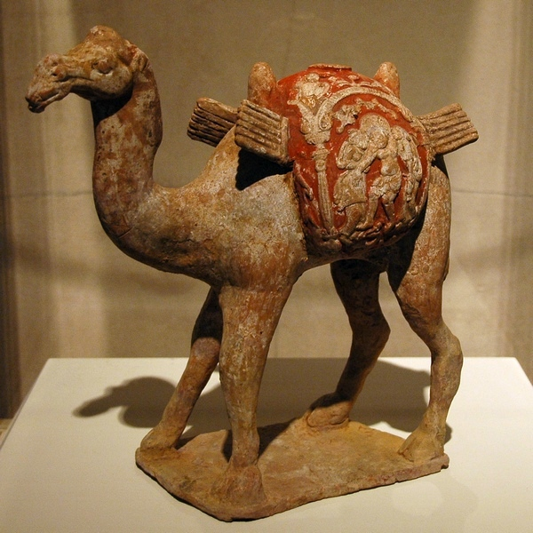 Bactrian camel (Chinese)