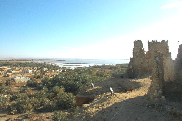 Siwa, East Lake. To the right, ruins of the ancient sanctuary.
