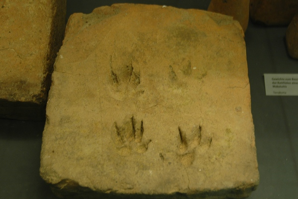Neuss, Tile from a hypocaust with paws of a badger