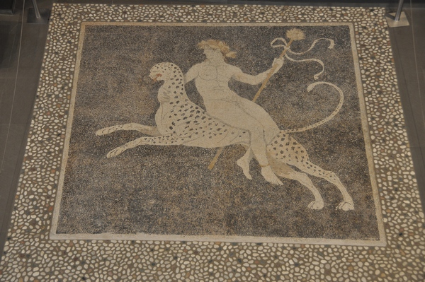 Pella, House of Dionysus, mosaic