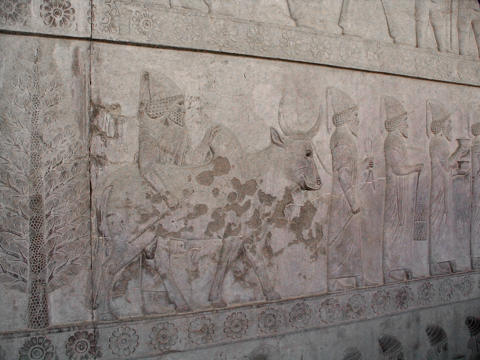 Persepolis, Apadana, East Stairs, southern part, Babylonians (1)