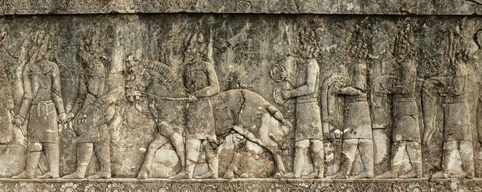Apadana, North Stairs, Tribute Bearers, Scythians