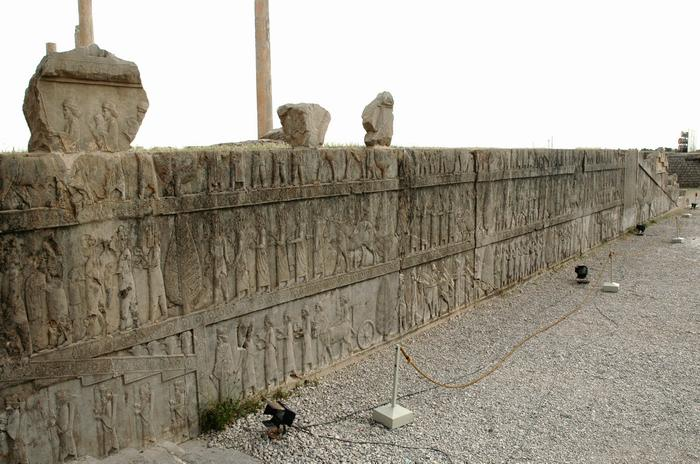 Persepolis, Apadana, North Stairs, Tribute bearers