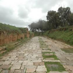 Lepcis Magna Decumanus Livius