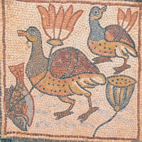 Qasr Libya, mosaic 1.06.e (Ducks and lotuses)