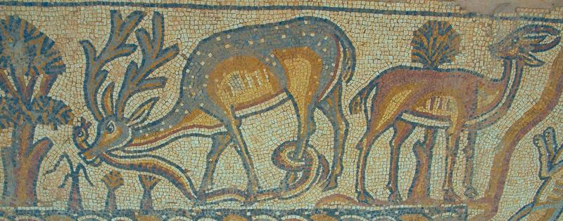Qasr Libya, East church, annex mosaic, edge