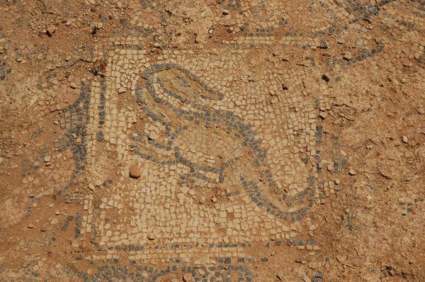Taucheira, Palace Church, mosaic 1: lizard