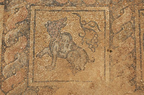 Taucheira, Palace Church, mosaic 5: wolf