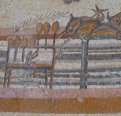 Villa Selene, mosaic of the hippodrome (2)