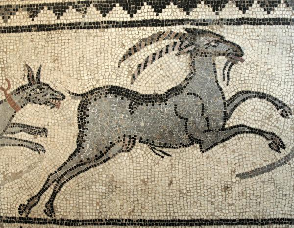 Halicarnassus, Mosaic of a hunt