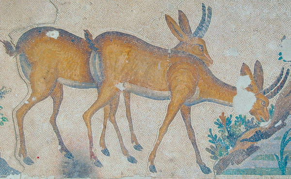 Constantinople, Imperial Palace, Mosaic of two deer