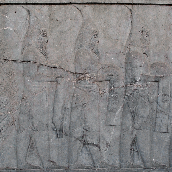 Sakâ tigrakhaudâ. Relief from the eastern stairs of the Apadana at Persepolis.