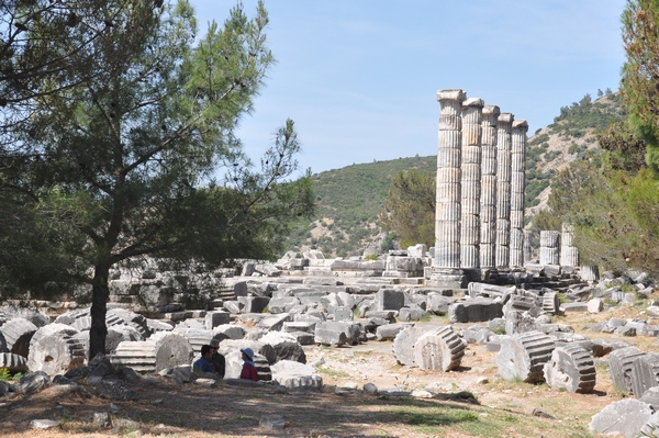 Priene, Temple of Athena Polias (2)