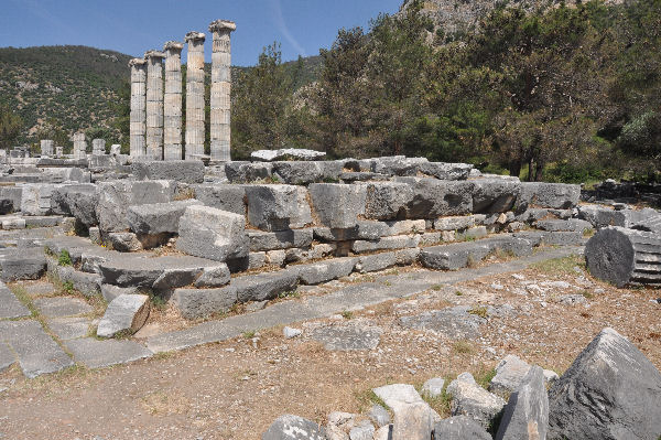Priene, Temple of Athena Polias (3)