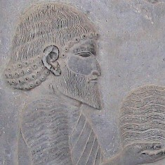 Yaunâ (Greek). Relief from the eastern stairs of the Apadana at Persepolis