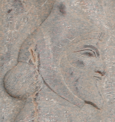 A Thracian (Relief from the eastern stairs of the Apadana in Persepolis)
