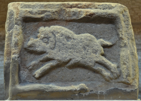 The boar of XX Valeria Victrix (Vindolanda)