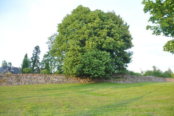 Tongeren, Roman wall, Cottaweg