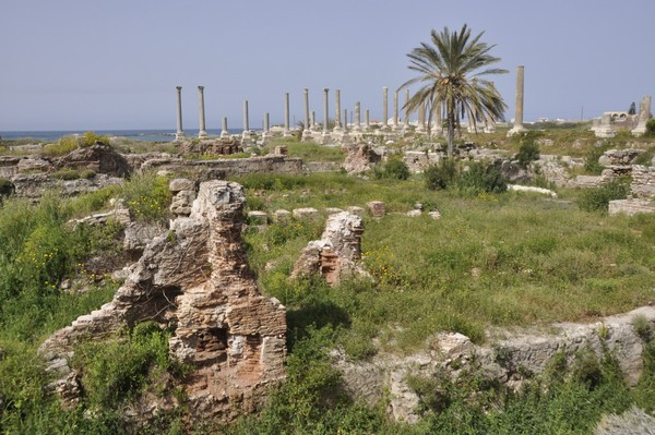 Tyre, city, Baths (from SE)