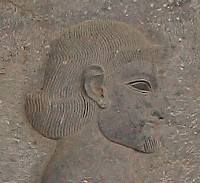 An Arab. Relief from the East Stairs of the Apadana, Persepolis