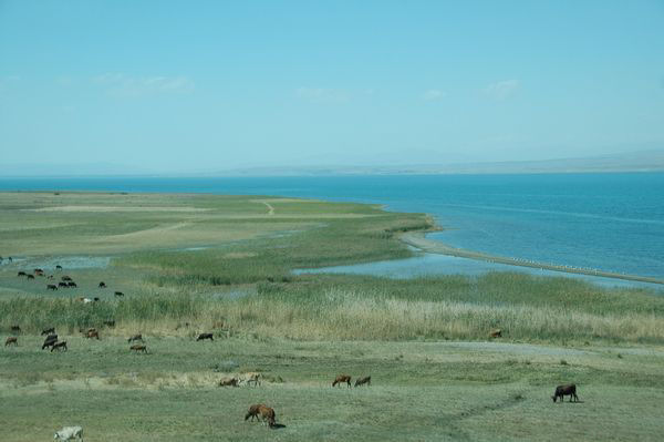 Lake van from the northeast