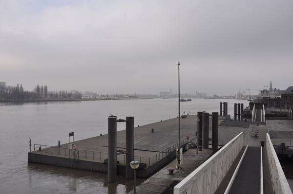 The Scheldt near Antwerp