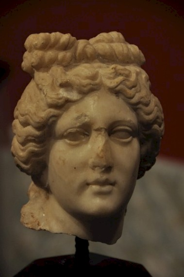 Head of Venus