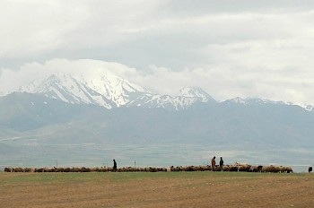 The Nesaean Plain, surrounding Ecbatana (modern Hamadan)