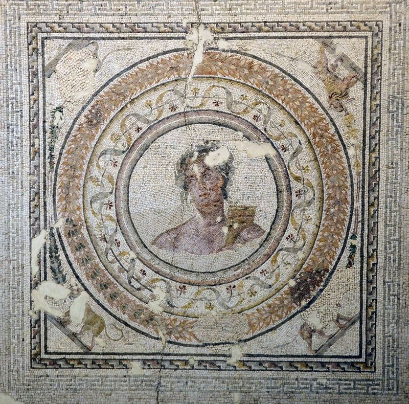 Salona, Governor's Palace, Mosaic of Apollo