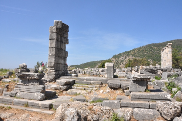 Priene, Temple of Athena Polias (4)