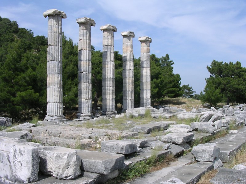 Priene, Temple of Athena Polias (6)