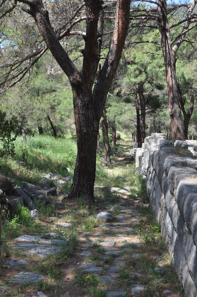 Priene, Theater Road