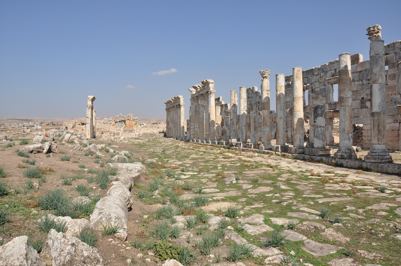 Apamea, Colonnaded Street (8)