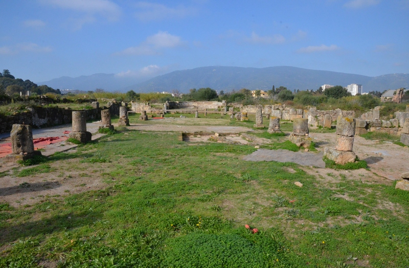 Hippo Regius, Basilica, General view