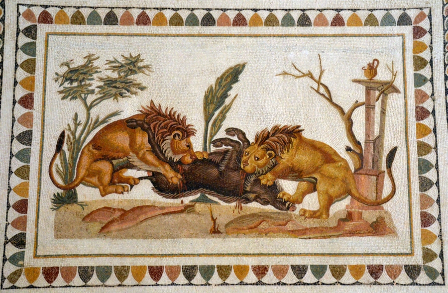 Thysdrus, House of the Dionysiac Procession, Mosaic of lions