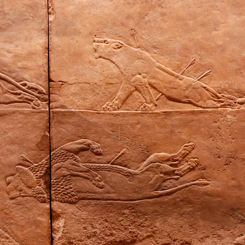 Nineveh, Palace of Aššurbanipal, Aššurbanipal's Lion Hunt (8)