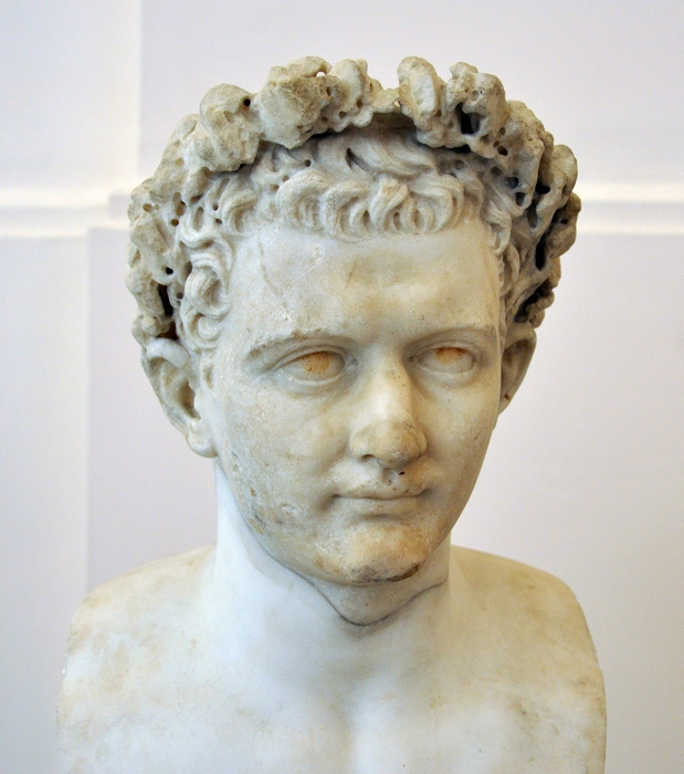 Domitian, Young