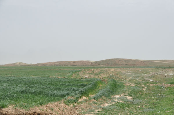 Tell Malyan, View from the west