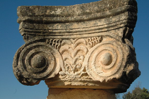 The Asclepium of Balagrae, silphium-shaped capital