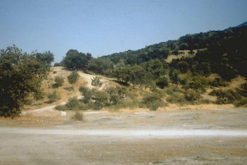 thermopylae 480 bce livius