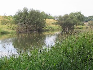 The Lippe near Holsterhausen